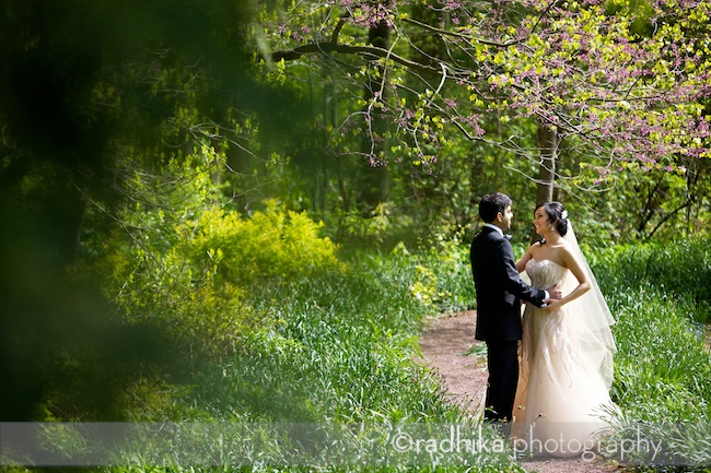 nj wedding portraits reeves-reed arboretum